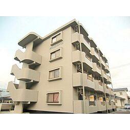 静岡県浜松市中区高丘北3丁目の賃貸マンションの外観