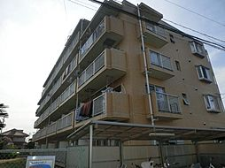 クレスティータ17[3階]の外観