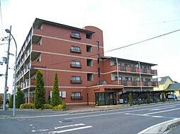 滋賀県甲賀市水口町南林口の賃貸マンションの外観