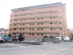 ベルアビタシオン[5階]の外観