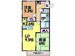 愛媛県松山市水泥町の賃貸マンションの間取り