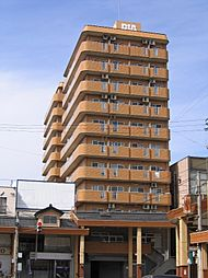 ダイアパレス高田弐番館[10階]の外観