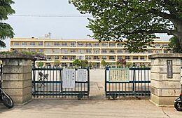 小学校小金井市立 小金井第一小学校まで734m