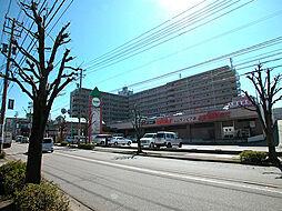 サンピア泉ヶ丘(リノベーション)[315号室]の外観