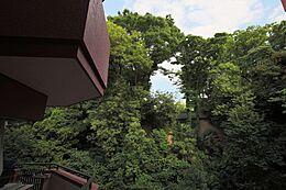 バルコニーからの眺望。(2017年6月)