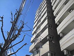 サンモールアベニュー[7階]の外観