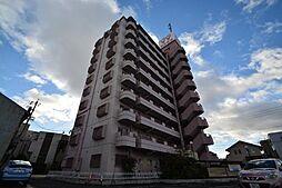 サンマンション[7階]の外観
