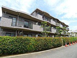 千葉県松戸市常盤平6丁目の賃貸マンションの外観