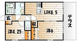 新築片野ハイツ[1階]の間取り