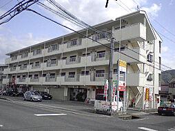 和歌山県岩出市西野の賃貸マンションの外観