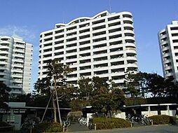 ベイシティ浦安 E棟[11階]の外観