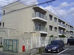 コーラルハイム小机[3階]の外観