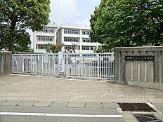 三沢中学校 533m