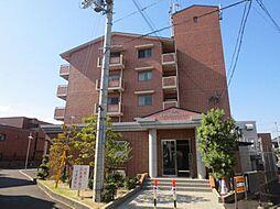 兵庫県尼崎市武庫之荘9丁目の賃貸マンションの外観