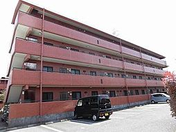 コーナス・ガーデンA棟[4階]の外観