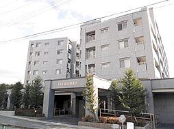 京都市左京区一乗寺西水干町