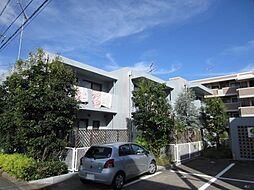 [タウンハウス] 静岡県浜松市中区上島1丁目 の賃貸【静岡県 / 浜松市中区】の外観
