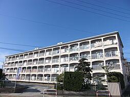 文栄第一ビル[3階]の外観