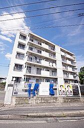 赤坂ハイツ[303号室]の外観