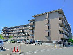 奈良県奈良市西大寺国見町1丁目の賃貸マンションの外観