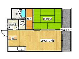 兵庫県神戸市東灘区西岡本5丁目の賃貸マンションの間取り