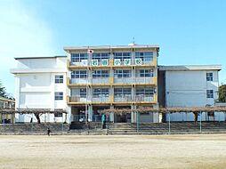 北九州市立若園小学校(233m)
