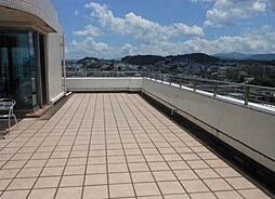 グランドメゾン平尾参番館[12階]の外観