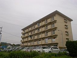 グリーンマンション三彩[4階]の外観