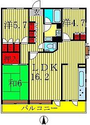 エスポワール八柱[1階]の間取り