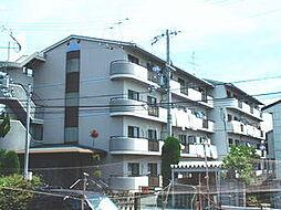 大阪府豊中市走井1丁目の賃貸マンションの外観
