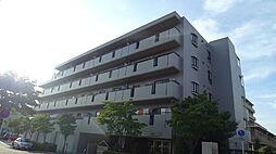 ベルデュール 茅ヶ崎[203号室]の外観