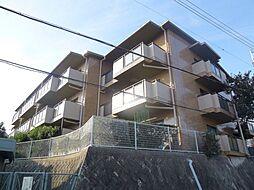 兵庫県宝塚市平井2丁目の賃貸マンションの外観