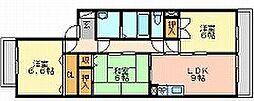 岡山県岡山市中区原尾島4丁目の賃貸マンションの間取り