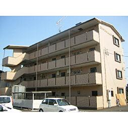 静岡県浜松市浜北区貴布祢の賃貸マンションの外観