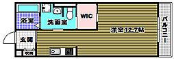 南海高野線 金剛駅 徒歩10分の賃貸アパート 2階ワンルームの間取り