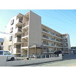 静岡県浜松市南区新橋町の賃貸マンションの外観
