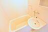 風呂,1K,面積24m2,賃料2.7万円,JR常磐線 赤塚駅 徒歩35分,,茨城県水戸市堀町