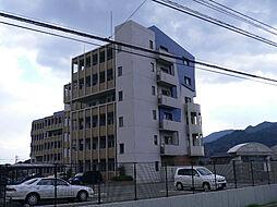 ニューガイア上石田[1階]の外観