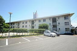 柳井コーポ[3階]の外観
