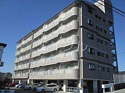 DRハウスII[4階]の外観