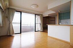 シテラ川崎グラフォンテ(定期借家契約3年)[10階]の外観