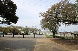 町田市立町田第六小学校まで約902m