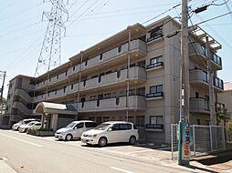 ドール辻井[4階]の外観