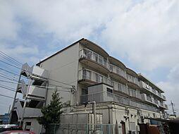 埼玉県新座市野寺2丁目の賃貸マンションの外観