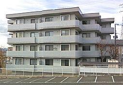 メゾン寿[4階]の外観