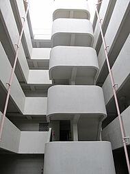東京都板橋区中台1丁目の賃貸マンションの外観