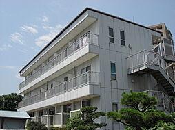 千鶴ハイツ[3階]の外観