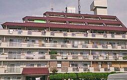 グリーンプラザ竹ノ塚[604号室]の外観