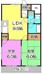 埼玉県新座市野火止3丁目の賃貸マンションの間取り