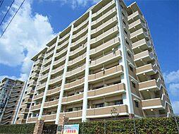 ニューシティアパートメンツ南小倉Ⅱ[7階]の外観